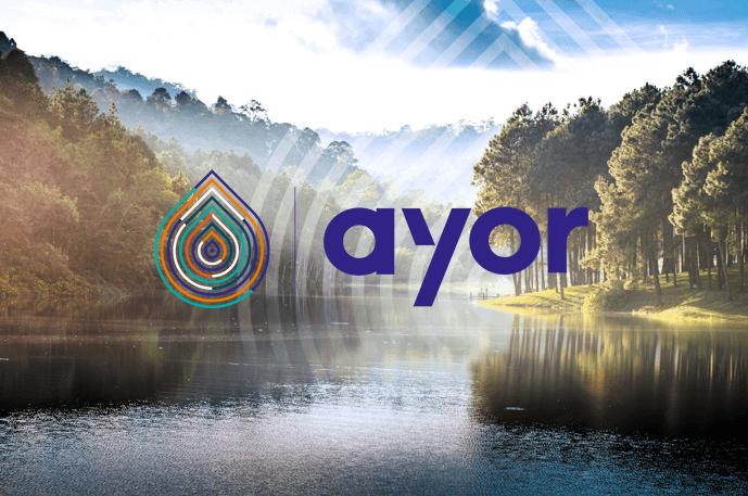 3C-EVOLUTION accompagne le groupe AYOR dans la digitalisation de son référentiel produit