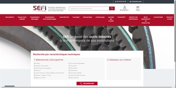 Page site e-commerce B2B de SEFI